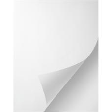 1 Carton: 100 Sheets/Carton HP Indigo 3 mil Closs Versaply Pressure Sensitive Sheets 12