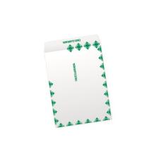 Papercone HERCULINK® Zip Stick® Flat Envelopes 4150FC First Class Green Border 9 x 12 Flaps Folded, Open End, Sub 26 500/Carton