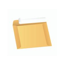 Papercone Document Envelopes 0532PL Brown Kraft 10 x 15 Un-gummed Open Side Seams, Flaps Folded, Sub 40 250/Carton