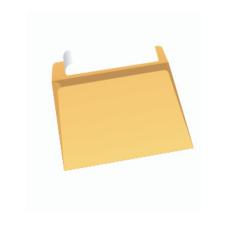 Papercone Zip Stick® Flat Envelopes 0915PL Brown Kraft 9 x 12 Inside Side Seams, Flaps Folded, Open Side, Sub 28 500/Carton