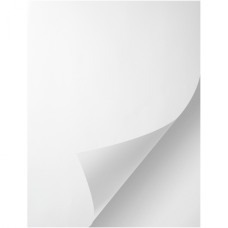 1 Carton: 100 Sheets/Carton Dual Digital 3.4 mil White Flexbile Vinyl Pressure Sensitive Sheets 12